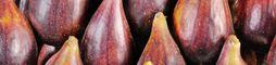 Prunes, raisins, figues et fruits d'automne