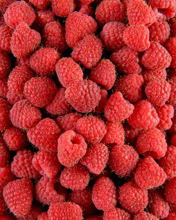 Fruits rouges et raisins